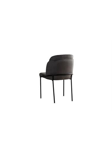Engince Mobilya Daisi Sandalye Renkli